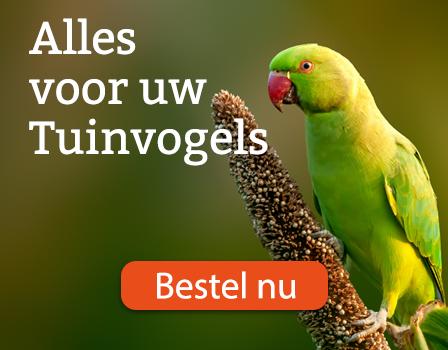 Ga naar alle producten voor uw tuinvogels